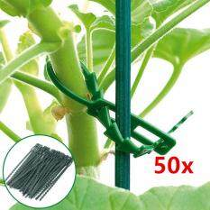 50 pcs Adjustable Plastic Plants Ties Tree Climbing Support Cable Ties Garden Horticulture Planting Tools Nursery Trays & Lids JJCF164