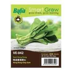 Baba Smart Grow Seeds VE-042 Hong Kong Choy Sum (Sawi Hong Kong) ±10G