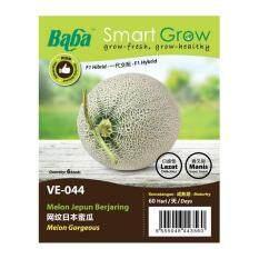 Baba Smart Grow Seeds VE-044 Melon Gorgeous (Melon Jepun Berjaring) 6SEEDS