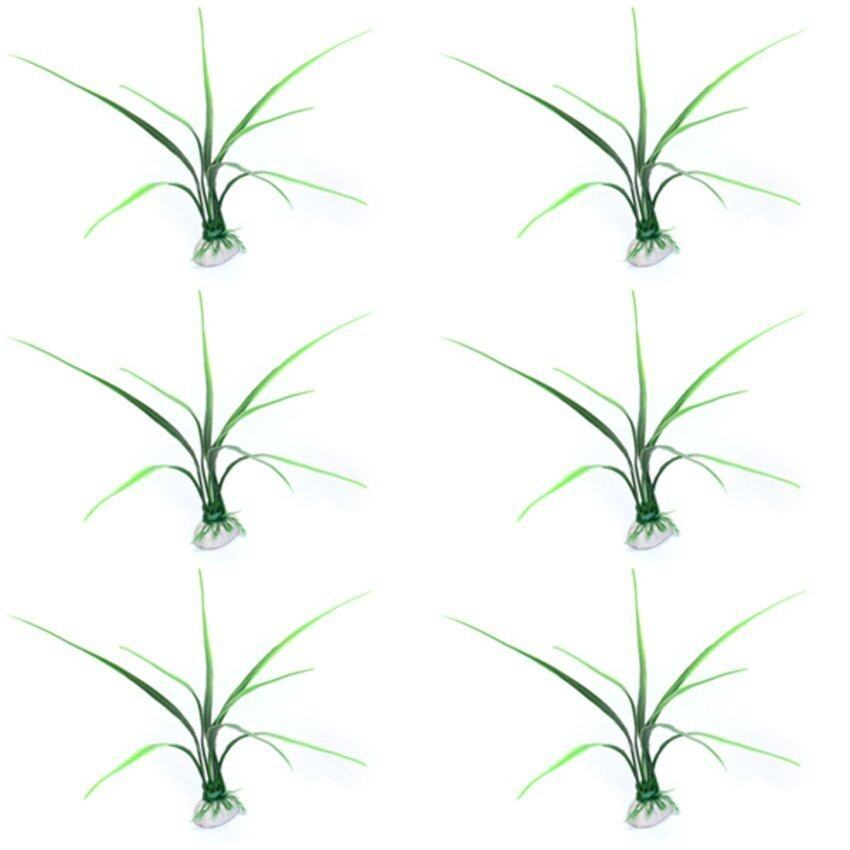 CTO Six Aquarium Grass Fish Tank Grass Decoration - intl
