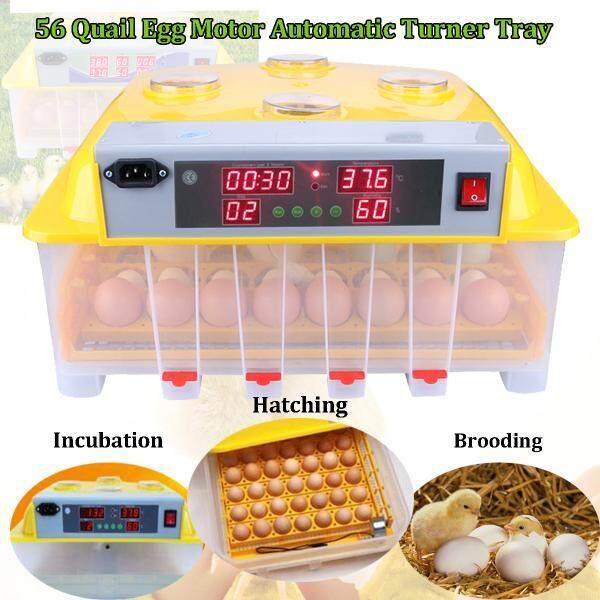 Digital 110 V 56 Inkubator Telur Otomatis Hatch Mengubah Ayam Burung Puyuh Unggas-Internasional