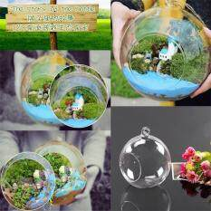 Hanging Glass Ball Vase Flower Plant Pot Home Office Decor Hanging size:6 cm