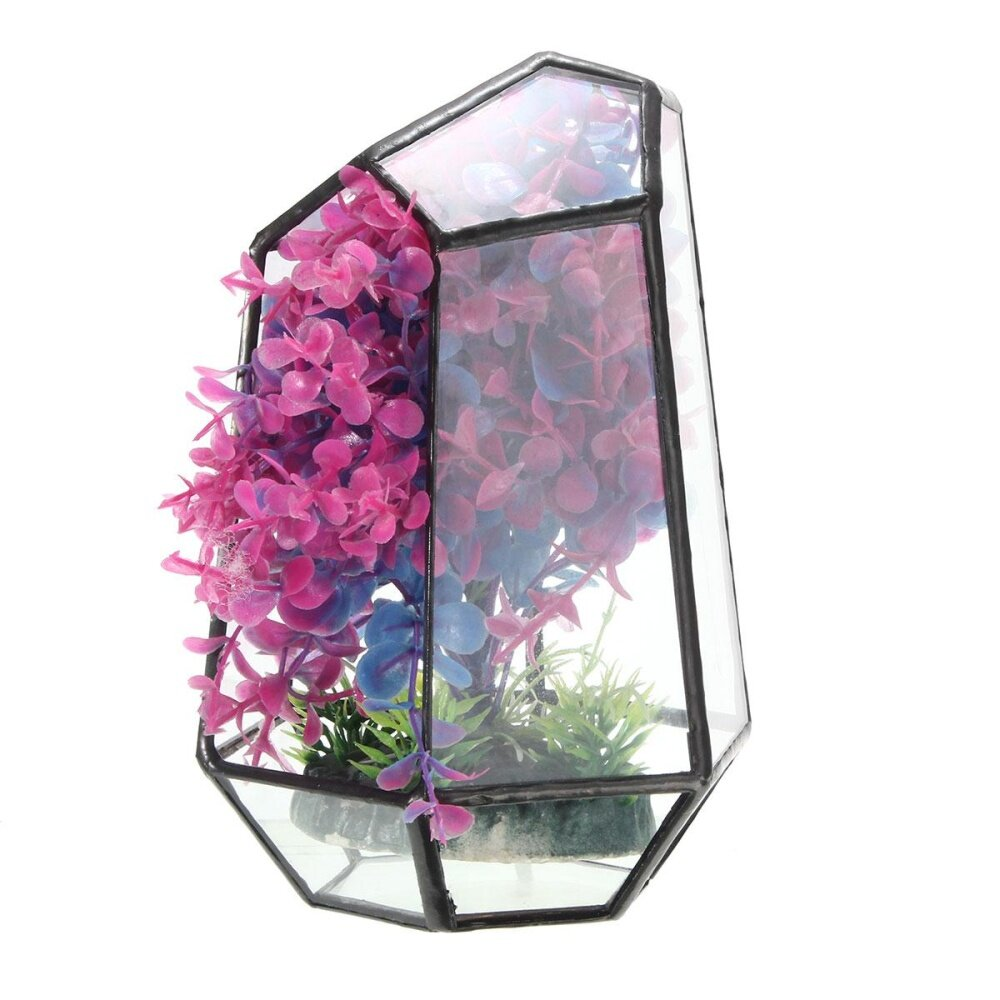 Irregular Glass Geometric Terrarium Box Tabletop Succulent Plant Planter White - intl