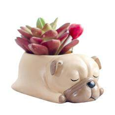 Kobwa Cute Animal Shaped Home Decoration Succulent Vase Flower Pots Cartoon Desktop Flower Pot Sleeping Pet Design(Pug)
