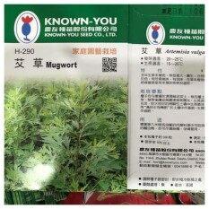 Mugwort 艾草