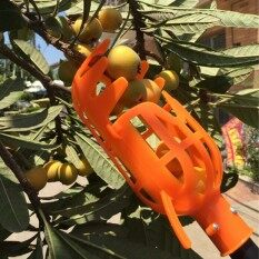 Mecola Plastic Fruit Picker without Pole Fruit Catcher Gardening Picking Tool
