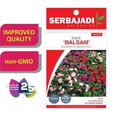 Serbajadi Seeds Balsam FS014
