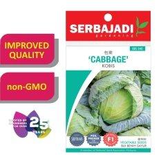 Serbajadi Seeds F1 Hybrid Cabbage - Kobis ( BBS040 )