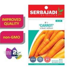 Serbajadi Seeds F1 Hybrid Carrot - Lobak Merah ( BBS009 ) (+/- 130