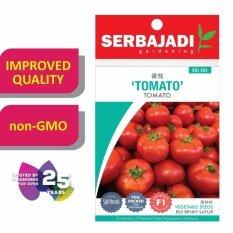 Serbajadi Seeds F1 Hybrid Tomato - ( Bbs004 ) (+/- 20 Seeds) By Gardenshop2u.