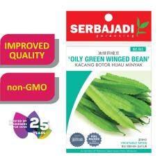 Serbajadi Seeds Oily Green Winged Bean - Kacang Botor Hijau Minyak (BBS065)