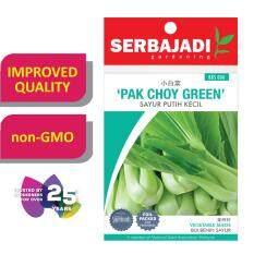 Serbajadi Seeds Pak Choy Green ( BBS006 )