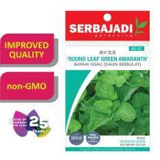 Serbajadi Seeds Round Leaf Green Amaranth ( BBS052 ) (+/- 235 Seeds)