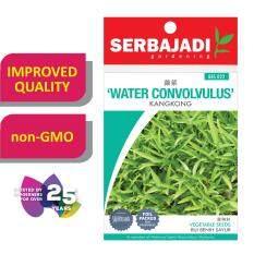 Serbajadi Seeds Water Convolvulus ( pointed leaf ) - Kangkong ( BBS022 )