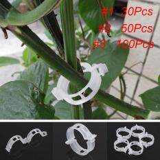 Useful White Tomato Clips Connects Plants Supports Vines Trellis Cages Fixed