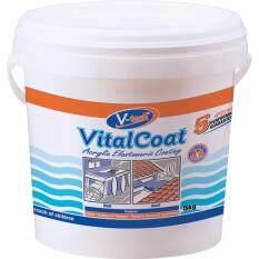 V-tech VT-4105KW Vitalcoat Acrylic Polymer (White) (5kg)