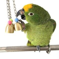 Wood  Rope Pet Parrot Bird Parakeet Budgie Cockatiel Funny Biting Toy