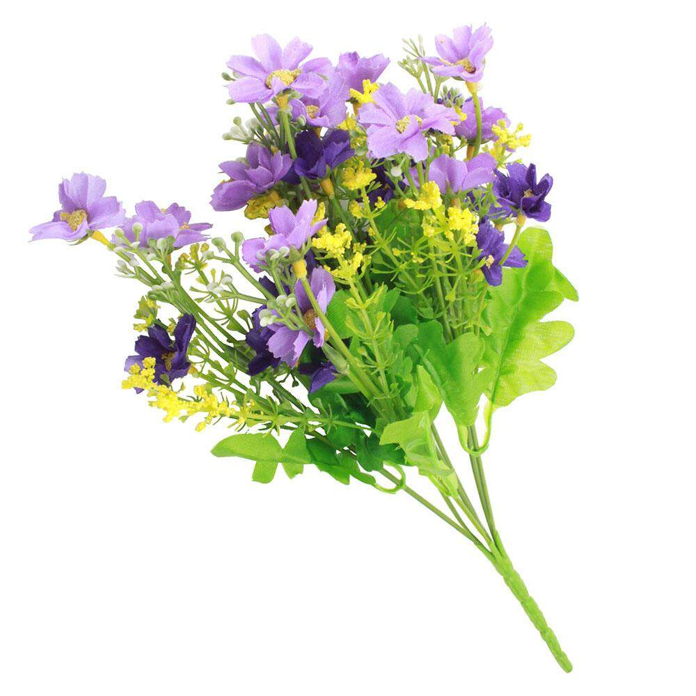 Buy   Sell Cheapest CHONGQING BUATAN CINERARIA Best Quality Product ... 3576519f89