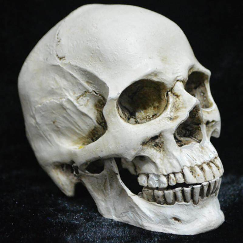 Rilakku White Resin Human Skull Model Medical Halloween Realistic Statue Decoration One Size