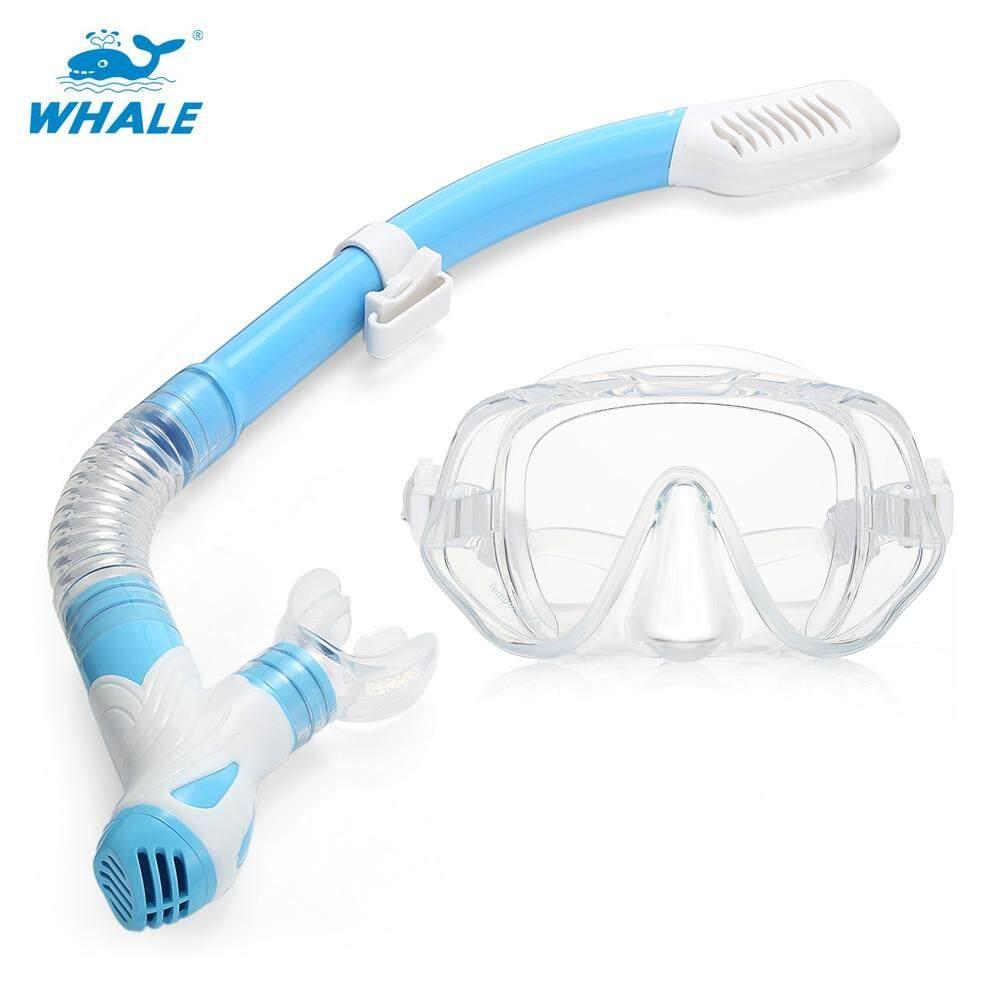 Whale MK1000 + SK900 Profesional Diving Snorkeling Silikon Masker Kacamata Snorkeling Set