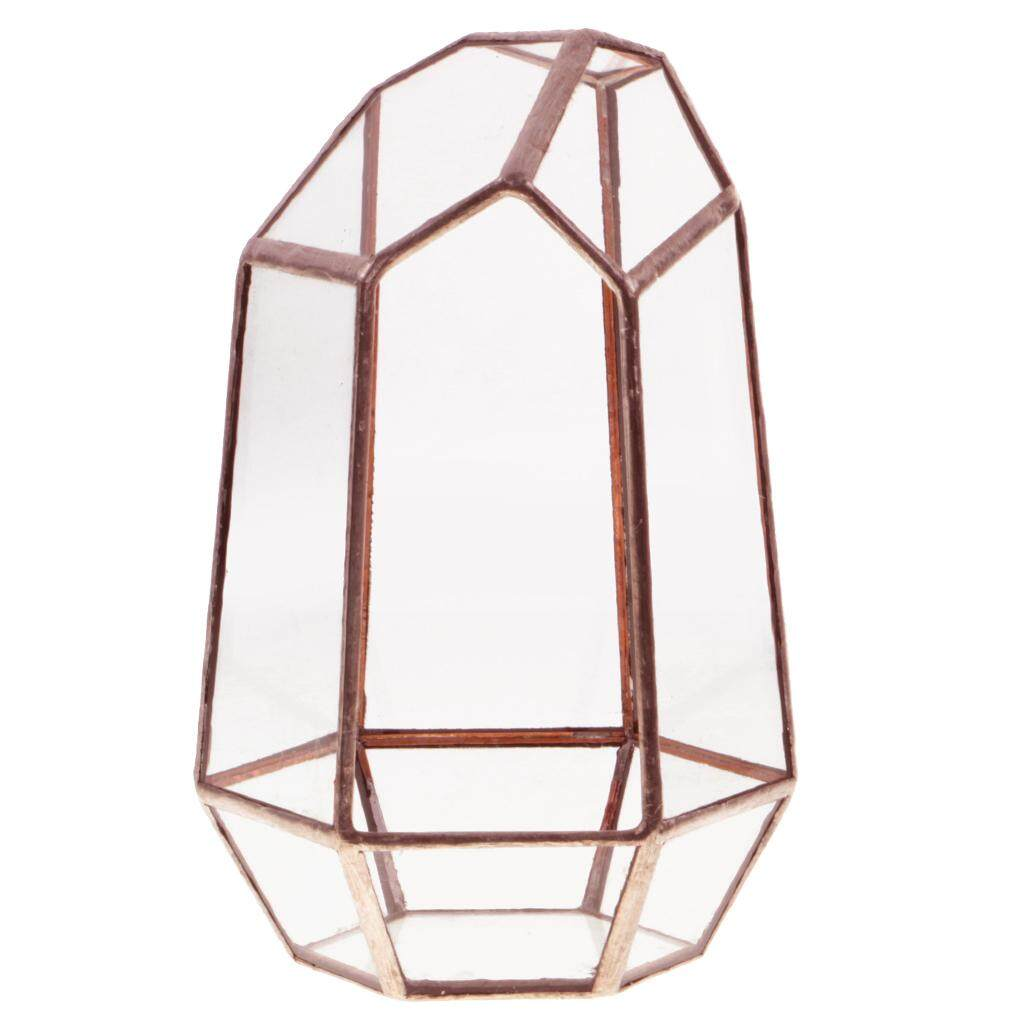 GuangquanStrade Modern Irregular Metal Glass Geometric Terrarium Tabletop Succulent Planter Box