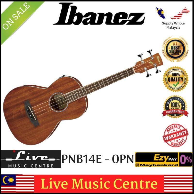 Ibanez PNB14E-OPN Open Pore Natural Acoustic-Electric Bass Parlor Body (PNB14E) Malaysia