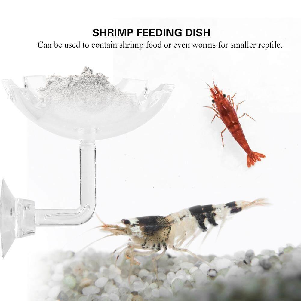DeeTee Acrylic Aquarium Shrimp Feeding Dish Bowl Tray Water Food Dish Feeder Bowl