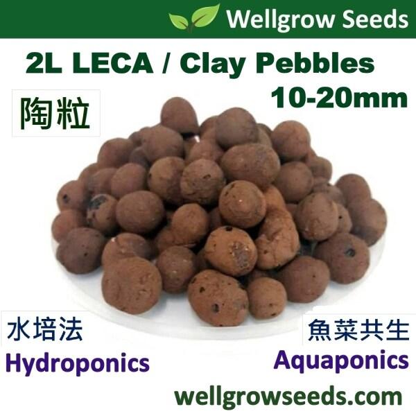 2L LECA Coarse 20-40mm (≈700gm) (Clay Pebbles / Clay Balls / Hydroton) 陶粒(细)  for Hydroponics & Aquaponics / Mulching Use