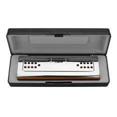 Thiên Nga SW24-12A Mặt Đôi Kèn Harmonica C/Phím G 24 Lỗ Đồng Bảng Đồng Hồ Thép Không Rỉ Ban Tremolo Harmonica Trong hộp nhựa