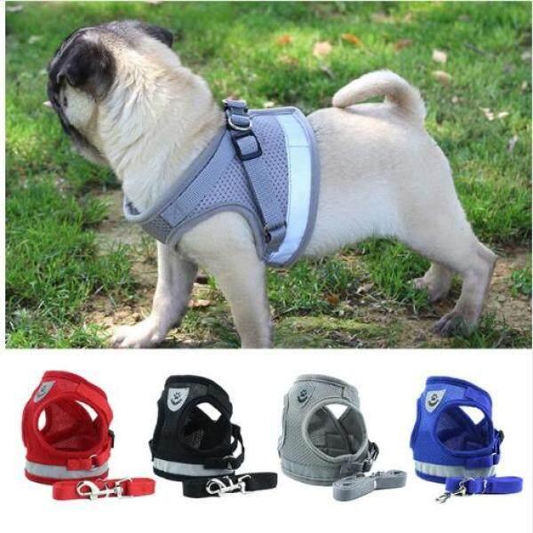 Bộ áo kèm dây dắt chó đi dạo xinh xắn có thể điều chỉnh được