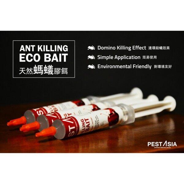 PEST ASIA Ants Eco Gel Bait 10g [Ant killer]
