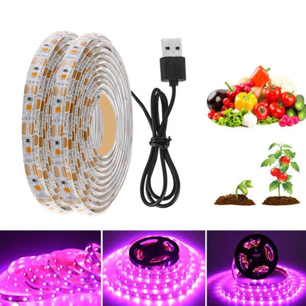USB Phytolamps Dải Đèn LED Trồng Cây 5V 2835 Băng LED Phyto Chip 1M 2M 3M Cho Cây Giống Nhà Kính Thủy Canh