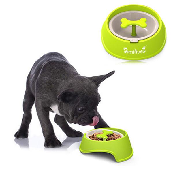 Bát ăn chậm cho chó mèo, thời gian cho thú cưng, bát ăn chống nghẹn cho chó