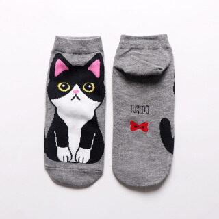 Mèo Con Mùa Thu Mùa Hè Cotton 1 Cặp Mèo Thoáng Khí Phụ Nữ thumbnail