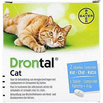 Bayer Drontal Cat Dewormer 1 Tablet