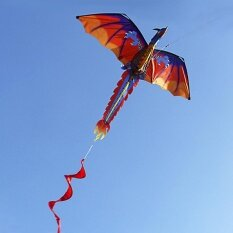 140cm X 120cm / 55 X 47 Inch Dragon Kite Single Line Flying Kite With Tail 100m Flying Line For Kids Adults By Tomtop.