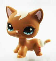 2'' Brown Cat Littlest Pet Shop LPS #1170 Kitty Animals Kids Toys Blue