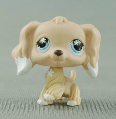 LPS Littlest Pet Shop #748 Girl toys Cream Tan Cocker Spaniel Dog Blue Flower Eyes