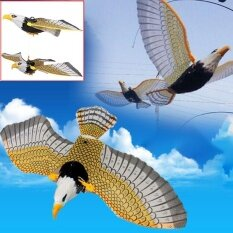 Magicworldmall Novelty Funny Toys Electric Hanging Flying Line Eagle Toy Fun Funny Activity Home Garden Children By Magicworldmall.