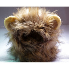 Rd-Dy125 Pet Cat Dog Costume Lion Mane Wig Hat For Dog Cathalloween By Xiamen Lizhi Import And Export Co.,ltd..