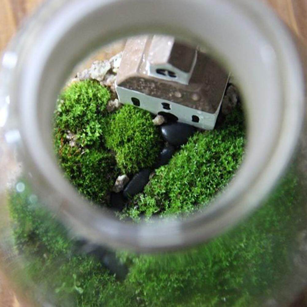8*11cm/3.15*4.33 inch Artificial Green Plastic Plant Grass succulents Moss Home Garden mini Ornament fence potted Decor crafts