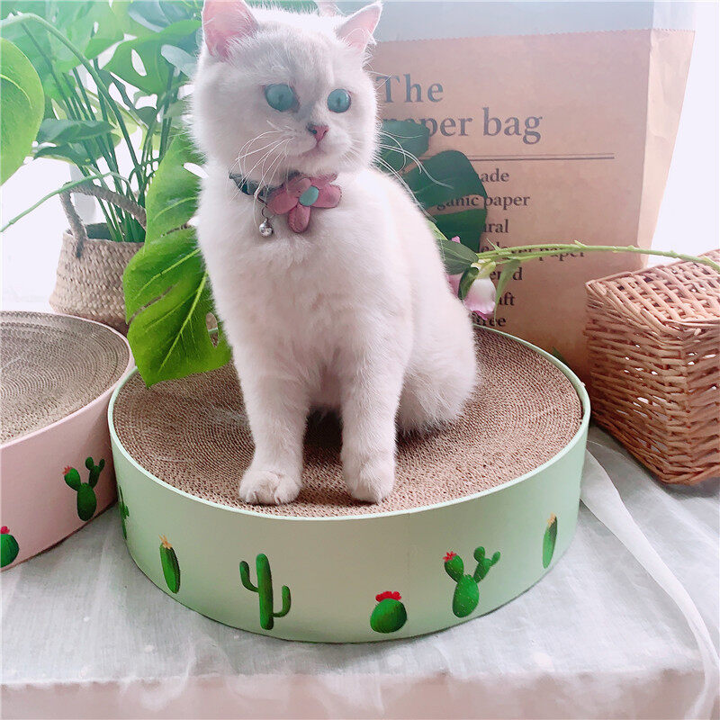 Cát Dog Mùa Hè Tấm Sóng Mèo Ban Đầu Vòng Mèo Claw Mài Đồ Chơi Xương Rồng Lớn Mèo Tổ Mèo Grabbing Bát Mèo Nồi