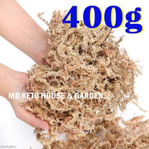A++ 400g Top Quality Golden Chile Chilean Sphagnum Moss For Bonsai, Cattleya Phalaenopsis Dendrobium Orchid By Md Home & Garden.