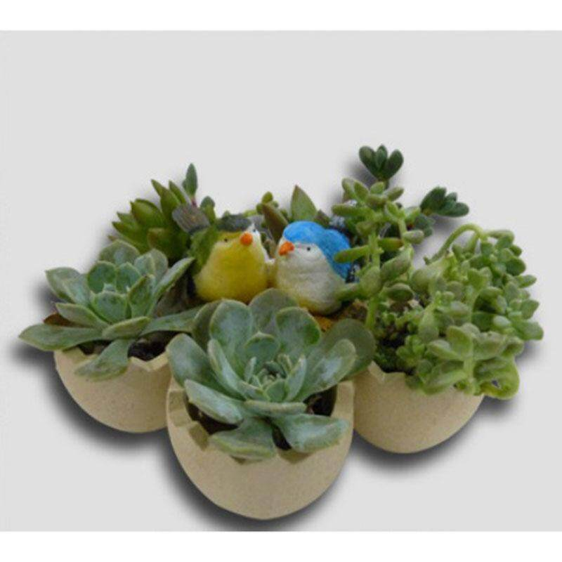 Bird and egg resin crafts creative pot succulent pot moss micro landscape decoration