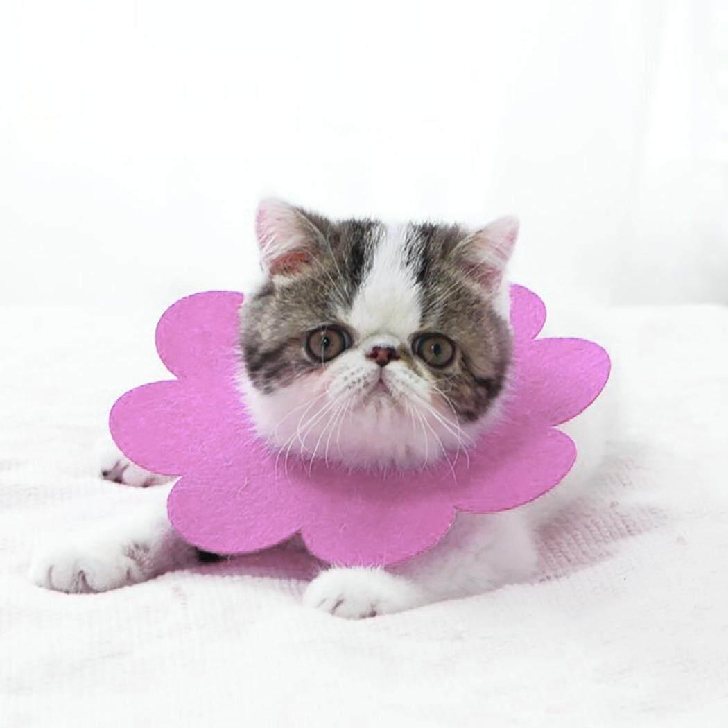 Thú Cưng Phục Hồi Cổ Dễ Thương Hình Hoa Cát Phục Hồi Cổ Nơ Đeo Cổ cho Mèo Con 18