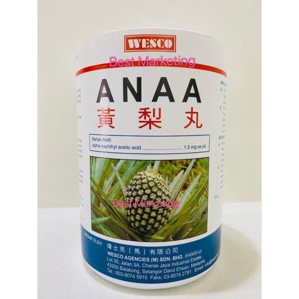 Pil Nanas / pineapple tablets (ANAA)