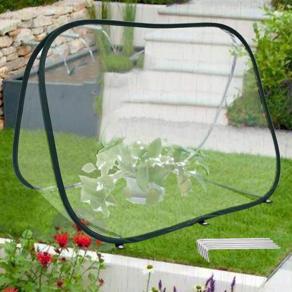 Mini Greenhouse Tent Mini Greenhouse Pop Up Pvc Grow House Backyard Portable Garden Plant Tent Greenhouse Cover