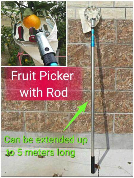 Fruit Picker with Extension Rod Stick Can be Extended to 5 meters long Full Stainless Steel Suitable for Picking Mango Papaya