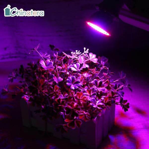 [Chinatera] 220V E27 2835 SMD Đỏ + Xanh LED Phát Triển Bóng Đèn Tăng Trưởng Thực Vật Trong Nhà