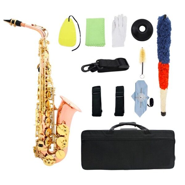 Dual-color Eb Alto Saxophone Sax Phosphor Copper Woodwind Instrument with Carry Case Gloves Cleaning Cloth Brush Sax Strap Mute Mouthpiece Brush Malaysia